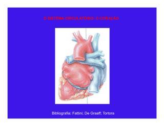 Aula de Cardiovascular Prof- Flavia Lima.pdf
