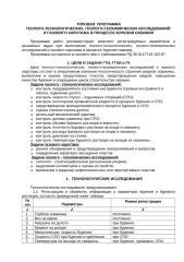Типовая программа ГТИ.doc