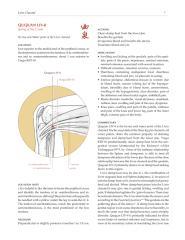 LIV-8.pdf